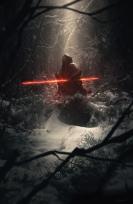 A Sith Lord Awaits
